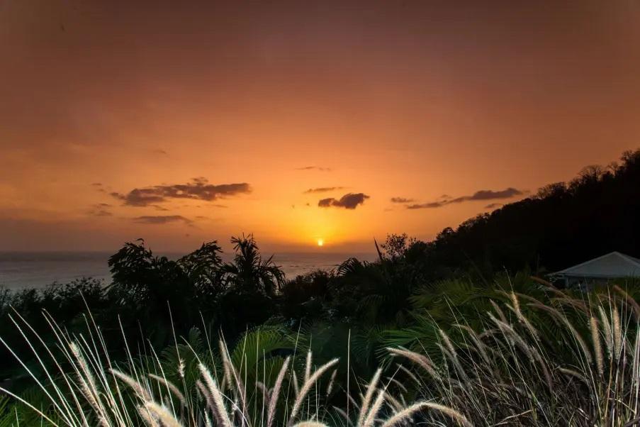 Rochers Caraïbes lauréat des prix Tripadvisor 2020